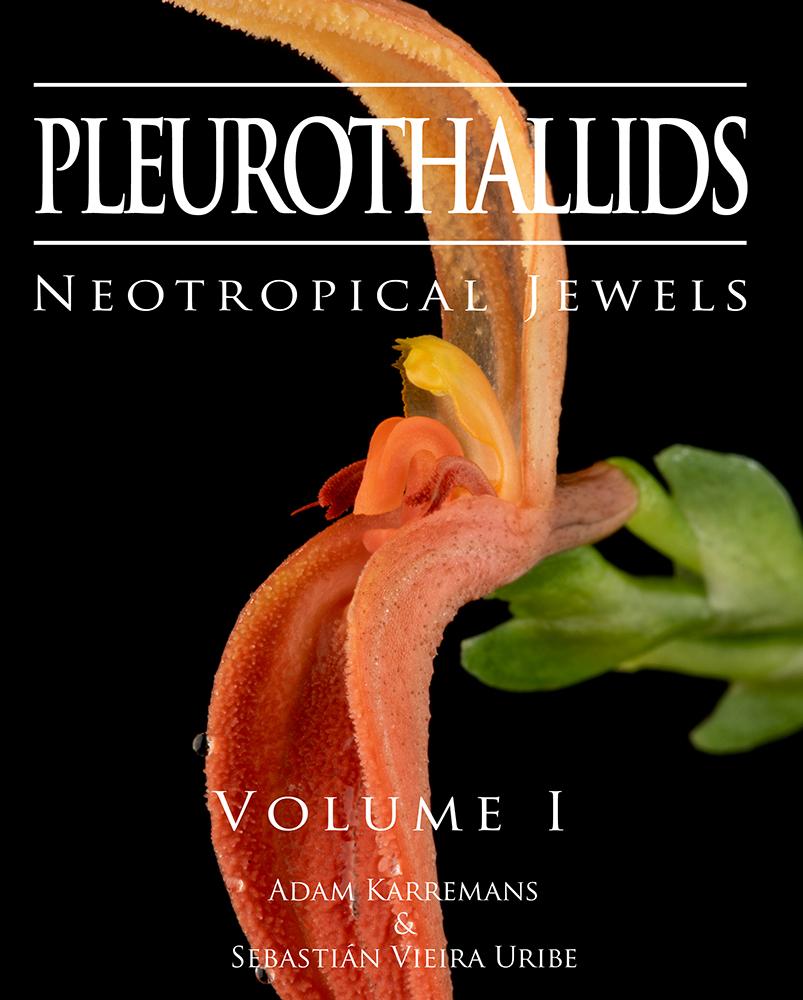 Pleurothallidinae Book 2020 Extract 2.jpg
